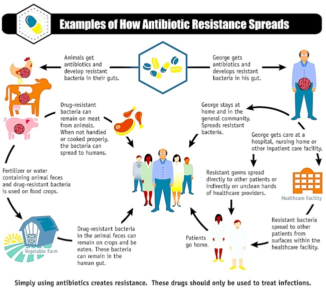 antibiotics review article